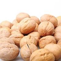 核桃的功效与作用核桃的营养价值和保健功效