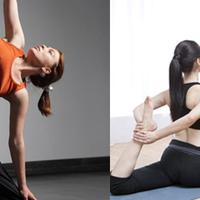 【图】瑜伽的好处有哪些提高生活质量的好帮手