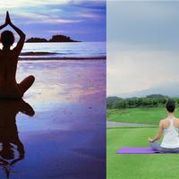 【图】瑜伽的好处有哪些没想到优点会这么多