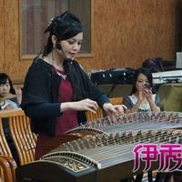 郑颖芬彩排音乐会古筝弹唱《菊花台》